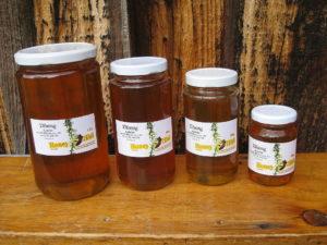 Buy Golden Honey